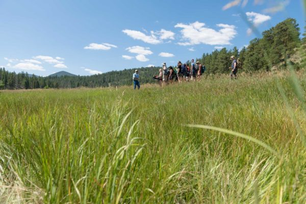 Rangeland Ecosystem Science (M.S.)