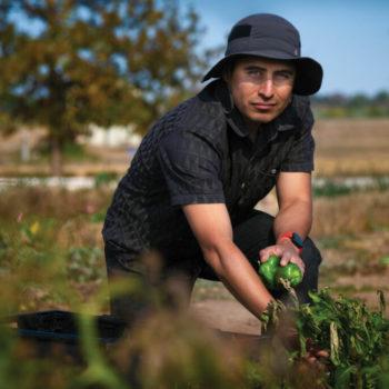 Hugo in the field